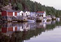 Cards Harbour